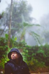 IMG_6259 (athingcalledlife) Tags: blackandwhite india green art nature rain photography colours lush coorg virajpet vsco