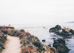 Big Sur (Alesha A.B.) Tags: ocean california santacruz landscape kodak bigsur analogue portra filmphotography