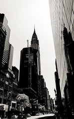 Walk through NY (Cyrill - cpixel.fr) Tags: street new york city blackandwhite bw panorama usa white newyork abstract black building tower skyline architecture cat liberty photo nikon noir cityscape view state noiretblanc manhattan vert nb explore adobe esb empire empirestatebuilding chrysler paysage exploration blanc topoftherock photograhy lightroom rockfeller d90 cyrill cpixel