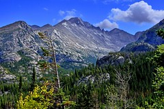 IMPOSING PEAK (Wolf Creek Carl) Tags: trees mountains nature rockies outdoors nationalpark colorado rockymountain longspeak rockmountainnationalpark