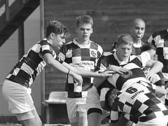 IMG_0069 (tamaratorcinaro) Tags: sport rugby napoli oro fiamme u16 afragola under16 nrr fiammeoro ffoo fiammeorou16