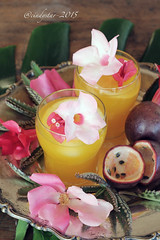 bula talei (cindystarblog) Tags: flowers fiji fruit worldwide drinks fiori frutta liqueurs abbecedario liquori