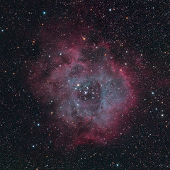 Rosette Nebula [test] (agavephoto) Tags: red night stars space astro oxygen nebula astrophotography astronomy nightsky hydrogen improvements oiii starcluster primefocus ngc2237 hydrogenalpha astrograph loneexposure starformation ngc2238 ngc2246 ngc2252 sh2257