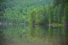 Silver Lake Flat. Alpine Loop, Utah (Jeff in Henderson) Tags: lake fish mountains water reflections utah nikon flat loop alpine silverlake evergreens sundance d810