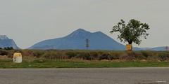 D8 X D953 - Plateau de Valensole (Babaou) Tags: france frankreich paca provence lavande lavendel alpesdehauteprovence provencealpescôtedazur hauteprovence plateaudevalensole labatie2015