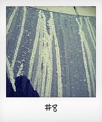 """#DailyPolaroid of 6-10-15 #8 • <a style=""""font-size:0.8em;"""" href=""""http://www.flickr.com/photos/47939785@N05/22834276349/"""" target=""""_blank"""">View on Flickr</a>"""