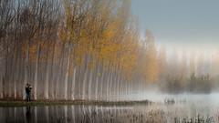 David Frutos (Mariano Belmar Torrecilla) Tags: spain niebla albacete agramon oto davidfrutos