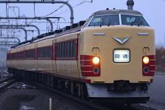 _DSC9074 (nEUROn FL) Tags: train tokyo railway jr m51 jnr  jr irodori 189