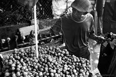 Lanzones (entnarvaez) Tags: fruit lanzones zamboangacity