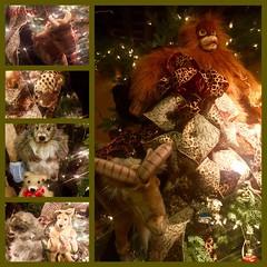 Share the Love of Christmas (EDWW day_dae (esteemedhelga)) Tags: santa christmas xmas holiday snow stockings st bells festive reindeer snowflakes snowman globe poinsettia illuminations garland holly scrooge nicholas elf wreath evergreen ornaments angels tinsel icicle manger yule santaclaus mistletoe nutcracker cheer jolly christmastrees happyholidays bethlehem merrychristmas bauble rejoice goodwill partridge elves yuletide caroling holidayseason carolers seasongreetings merrifieldgardencenter edww christchild daydae esteemedhelga jesus hohoho gingerbread wrappingpaper giftgiving joyeuxnoel northpole holidaydecornativity sleighride artificialtree candycane feliznavidadfrostythesnowman kriskringle sleighbells stockingstuffer wisemen twelvedaysofchristmas winterwonderland