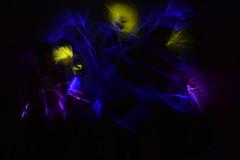 Starry Night - Light Drawing (Floss Pottage) Tags: longexposure light night photography sticks long exposure glow van gogh starry