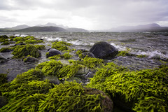 Green Sea - Grey Mountains (memories-in-motion) Tags: uk scotland sea water green moss algen stones waves mountains clouds weather cold wind outdoor fresh canon nature travel landscape seascape zeiss distagon 21mm