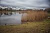 IMG_1055-Edit (brianfagan) Tags: 7d brianfagan ursula canon country eos nottingham nottinghamshire park rushcliffe uk ruddington england unitedkingdom