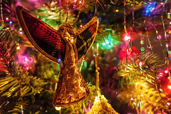 Christmas Angel (gabi-h) Tags: christmasangel tartanwings lights christmas festive gabih holiday night decorations