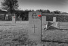 WE WILL REMEMBER THEM... (mark_rutley) Tags: portchester naval royal navy royalnavy stmarys church headstone rememberance poppy colourpop selectivecolouring