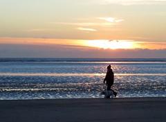 6957 Sunrise walk (Andy - Busyyyyyyyyy) Tags: 20170113 bbb beach ddd dog female fff kent lady lll romneysands sand sea silhouette sss sunrise walking woman www