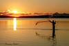 _MG_0991-2 (R.Räbel) Tags: aoarlivre lagoa lake pescador pescar pessoa pordosol silhueta sonnenuntergang sunset horadourada paisagem sonne sun sol landscape landschaft reflexo goldenhour fischer fisherman agua water wasser