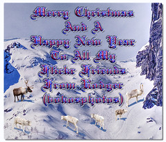 Merry Christmas To My flickr Friends (bokosphotos) Tags: eidfjordnorway norway merrychristmas reindeer friends flickrfriends reindeers affinityphoto serif affinityphoto151 marcopolo frommarcopolo samireindeer