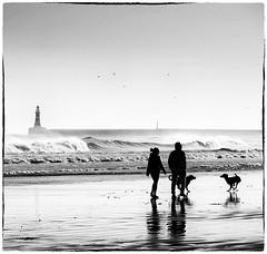 Family walking the dogs on the beach (dragonroy) Tags: mono roker beach blackandwhite royfrankland photography family beachwalking canoneos5dmkiii fineart artography