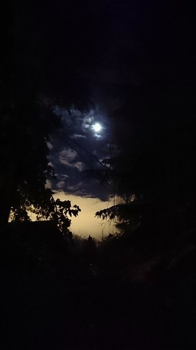 Moon seen from my yard
