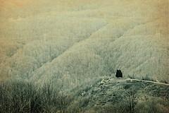 When I die... (halukderinöz) Tags: landscape manzara minimalism minimalizm haji bektash hacı bektaş mezarlık cemetery bolu mountain dağ turkey türkiye