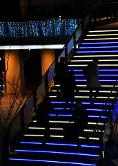 A thin future (kurotango Clip) Tags: 横浜 日本 みなとみらい nightview japan yokohama