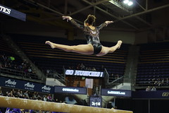 2017-02-11 UW vs ASU 72 (Susie Boyland) Tags: gymnastics uw huskies washington