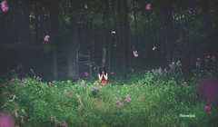 Magic Garden (SnowiesArt) Tags: dark art darkness girl sad garden magic flowers sweetpea surreal digitalart digitalmanipulation photoart