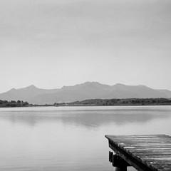 Silent water (horex_regina) Tags: 6x6 landschaft skopar voigtländer voigtländersuperb bw ilford delta 400 skopar75mm