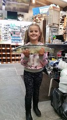 "Willow's Grey Mullet • <a style=""font-size:0.8em;"" href=""http://www.flickr.com/photos/113772263@N05/20522753059/"" target=""_blank"">View on Flickr</a>"