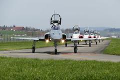 Northrop F-5E Tiger II Patrouille Suisse Swiss Army Emmen (roli_b) Tags: airplane army schweiz switzerland suisse suiza swiss aircraft air tiger jet svizzera flugzeug base emmen militr luftwaffe northrop patrouille patrouillesuisse f5e dsenjet swissairforce schweizerluftwaffe emmenairbase