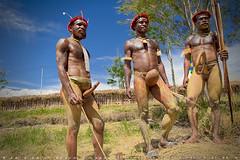 Dani's warriors (T Ξ Ξ J Ξ) Tags: indonesia d750 nikkor koteka teeje nikon2470mmf28 baliemvaley