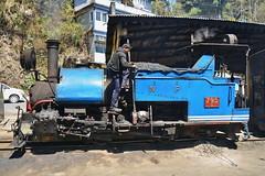 India - West Bengal - Darjeeling Himalayan Railway - Ghum Station - Steam Locomotive 795B - 41 (asienman) Tags: india westbengal darjeelinghimalayanrailway asienmanphotography