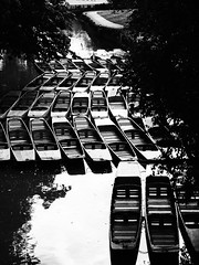Punts on the Cherwell (cycle.nut66) Tags: bridge trees blackandwhite art film water contrast river boats wooden view olympus filter oxford grainy grayscale cherwell punts evolt magdalene hogh epl1 mmonochrome microfourthirds