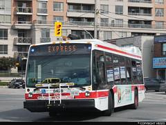 Toronto Transit Commission #8428 (vb5215's Transportation Gallery) Tags: toronto bus nova ttc transit commission lfs 2015