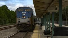 Amtrak Train 97 (MIDEXJET (Thank you for over 1 million views!)) Tags: silver star florida unitedstatesofamerica amtrak jacksonville silverservice p097 train97