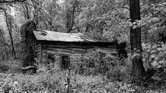 Ozark cabin ruin (joeqc) Tags: blackandwhite bw black tree abandoned blancoynegro monochrome canon mono route66 cabin fireplace aaron ruin mo forgotten missouri shack hillbilly ozark t3i greytones oncewashome