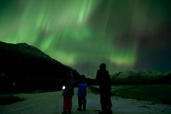 Looking in Awe (wolphcry) Tags: alaska aurora valdez northernlights thompsonpass