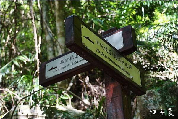 小錐麓步道8
