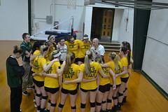 DSC_0015 (BrockportAthletics) Tags: new york college golden university state tournament playoffs volleyball ncaa potsdam eagles framingham clarkson the regionals brockport 2015 sunyac