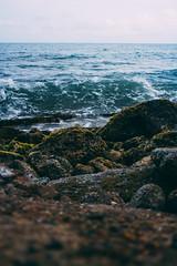 Ronny lvarez (Ronny lvarez) Tags: ocean sunset sea seascape film vertical 35mm landscape photography photograph cartagena filmphotography sunsetphotography