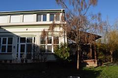 2015_November_0398 (emzepe) Tags: wood november roof fall yard garden wooden hungary patio utca 37 otthon ungarn fa udvar kert 2015 hongrie ősz terasz tető kertben hódmezővásárhely bercsényi nálunk hátsó szivarfa ácsolt ácsmunka terasztető