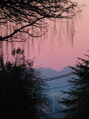 Looking East, Dusk (prima seadiva) Tags: silhouette evening dusk cascades bellevue