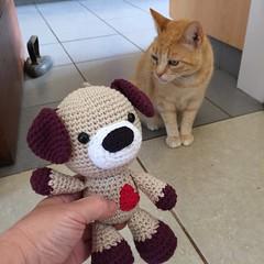 Sammy el cachorrito amigurumi (La Crochetera) Tags: gato cat lana yarn madeinchile hechoenchile handmade hechoamano cachorro puppy perro dog crochetedtoy crochet babytoy toy amigurumitoy amigurumi