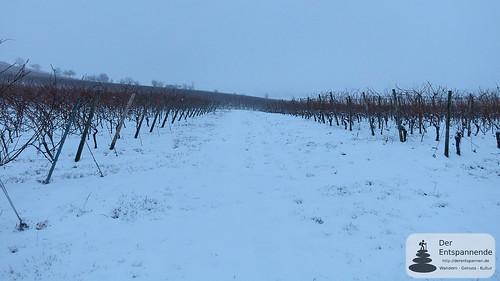 Schnee in den Weinbergen