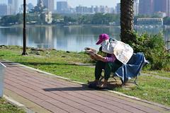 Newspaper (Bob Hawley) Tags: nikond7100 afnikkor2885f3545 asia kaohsiung taiwan lotuspond zuoying people reading newspapers