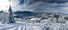 Poudre du sommet au lac (MB*photo) Tags: montagne suisse alpes hiver ski iphone7 panorama panoramique switzerland schweiz folly vaud montreux alps winter wwwifmbch léman powder white