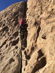 IMG_2518 (steph_abegg) Tags: 2016 california notmyphotos steph