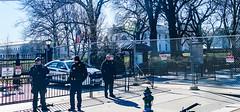 2017.02.04 No Muslim Ban 2, Washington, DC USA 00420