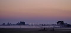 Just before sunrise (Wouter de Bruijn) Tags: fujifilm xt1 fujinonxf90mmf2rlmwr nature landscape sunrise dawn morning fog mist color sky trees fence gate outdoor